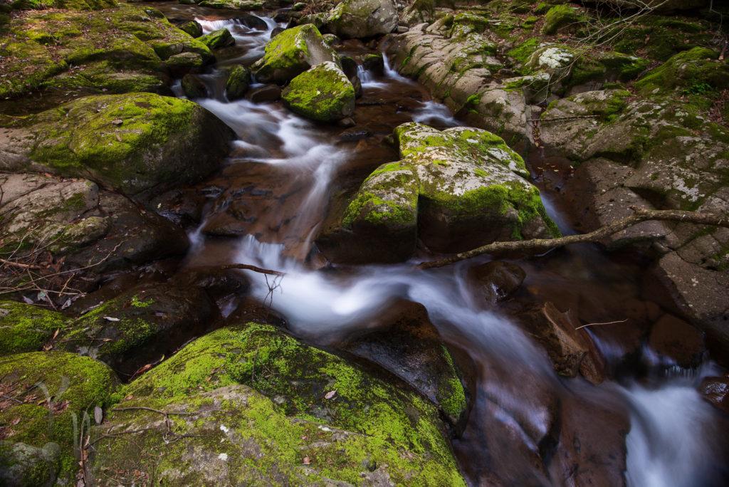 赤目渓谷内の小さな滝