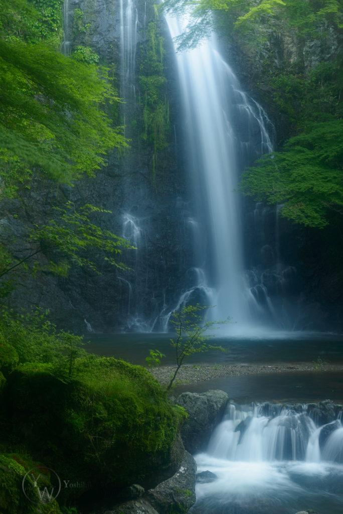 箕面大滝の写真